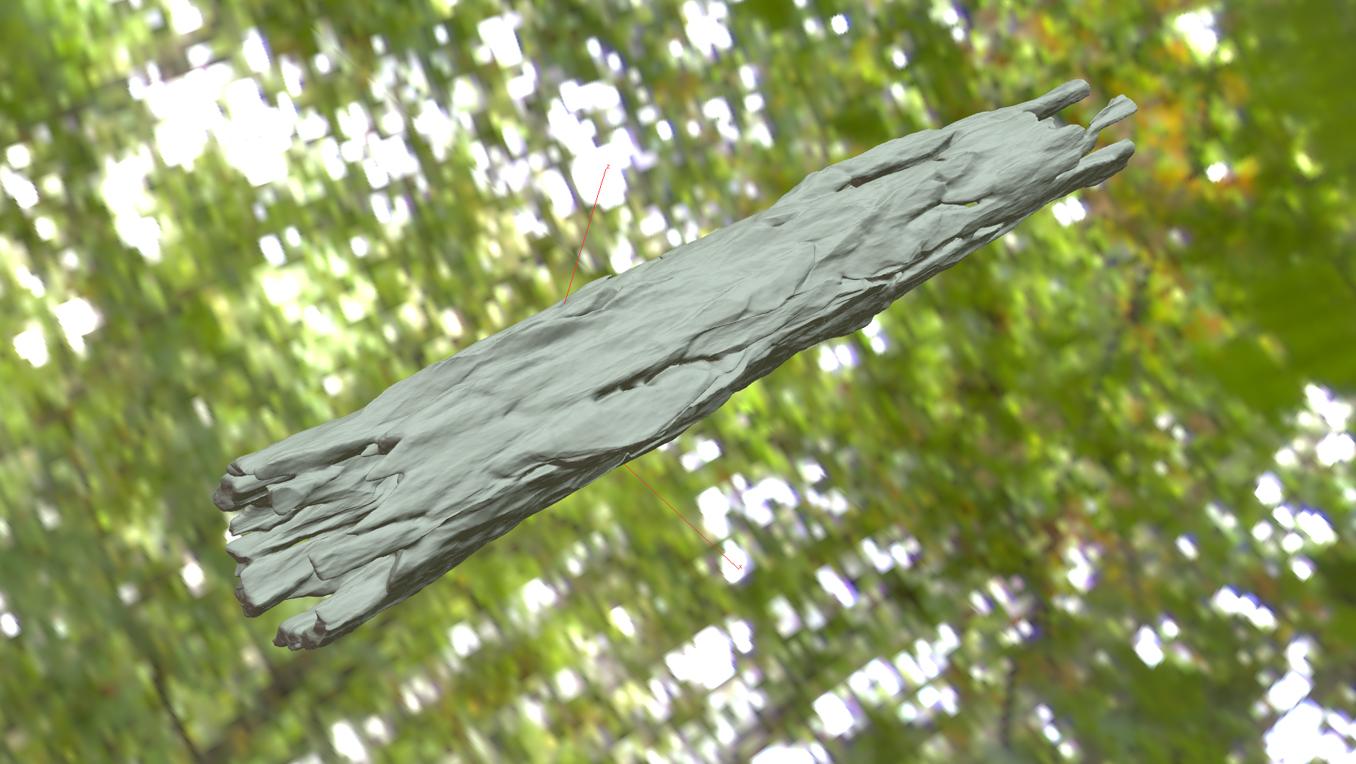 modelfactory_treebark_7